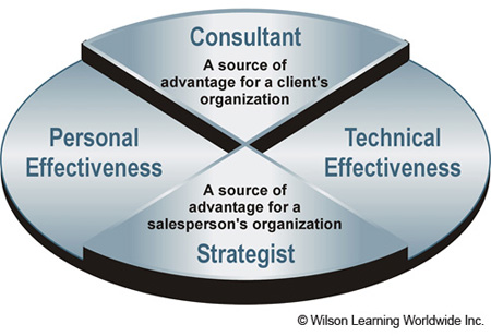 The Consultant/Strategist Model