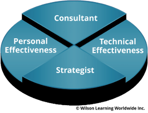 Consultant-Strategist Model